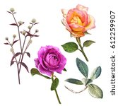illustration of beautiful... | Shutterstock . vector #612259907