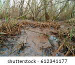 Natural Healing Mud And Peat...