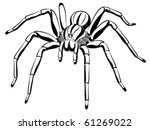 Spider, tattoo - stock vector