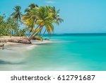 Palm Trees At A Beach In Saman...