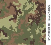 camo  camouflage pattern... | Shutterstock .eps vector #613073003