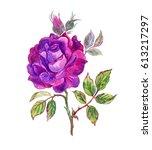 purple rose drawing in... | Shutterstock . vector #613217297