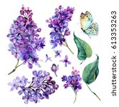 Stock photo watercolor collection of purple lilac flowers leaves and butterfly isolated on white background 613353263