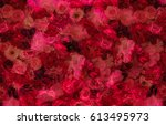 red flowers background | Shutterstock . vector #613495973