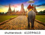 tourists with an elephant at... | Shutterstock . vector #613594613