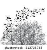 silhouette flying birds vector...   Shutterstock .eps vector #613735763