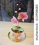 Small photo of cake fondant orchid