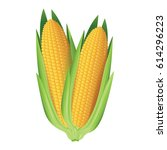 corn. two whole corn cobs.... | Shutterstock .eps vector #614296223