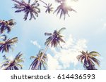 serenity tropical beach | Shutterstock . vector #614436593
