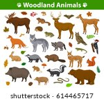 Stock vector woodland forest animals birds collection including deer bear owl wild boar lynx squirrel 614465717