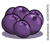 blueberries vector isolated on... | Shutterstock .eps vector #614470973