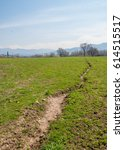 Small photo of Spring field with alfalfa. Spring field with alfalfa growing near the mountains