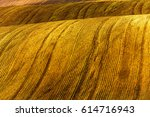 brown field ready for sowing | Shutterstock . vector #614716943