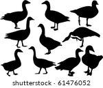 Goose Collection Silhouette  ...