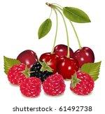 photo realistic vector... | Shutterstock .eps vector #61492738