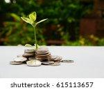 tree on money.   Shutterstock . vector #615113657