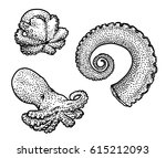 octopus and tentacle... | Shutterstock .eps vector #615212093