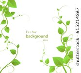 foliage on a white background  ... | Shutterstock .eps vector #615214367