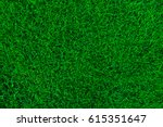 nature green grass background... | Shutterstock . vector #615351647