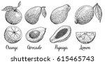 set of fruits orange  avocado ...   Shutterstock .eps vector #615465743