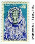 Small photo of GOMEL, BELARUS, APRIL 4, 2017. Stamp printed in Republic of Upper Volta shows image of The common warthog (Phacochoerus africanus) is a wild member of the pig family (Suidae), circa 1960.