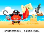 pirate crab funny vector