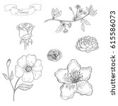 hand drawn sketch flower set .... | Shutterstock .eps vector #615586073