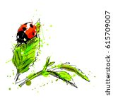 watercolor hand sketch ladybug. ... | Shutterstock .eps vector #615709007