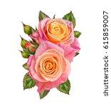 flower composition. a bouquet... | Shutterstock . vector #615859007