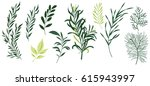 set leaf vector. collection of... | Shutterstock .eps vector #615943997