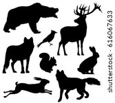 Stock vector forest animals vector silhouettes set predator animal mammal illustration of black silhouette 616067633