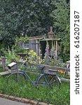 Small photo of A wildflower garden of a Fenland Alchemist