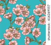 blooming almond. floral... | Shutterstock .eps vector #616269557