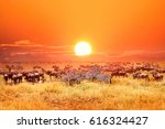 zebras and antelopes in... | Shutterstock . vector #616324427