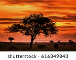 stunning sky at dawn and an odd ... | Shutterstock . vector #616349843