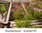 Ruin Of Old Yukon Cabin At Big...