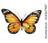 Stock photo beautiful yellow butterfly watercolor isolated on a white 616367987