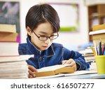 Asian Elementary School Boy...