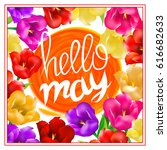 hello may hand lettering with... | Shutterstock .eps vector #616682633