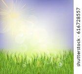 spring or summer background ... | Shutterstock .eps vector #616728557