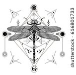 dragonfly vector magic tattoo... | Shutterstock .eps vector #616801733