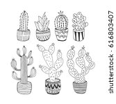 set of hand drawn cactus....
