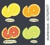 set of hand drawn lemon  orange ... | Shutterstock .eps vector #617029577
