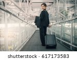 elegant asian businesswoman... | Shutterstock . vector #617173583