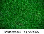 nature green grass background... | Shutterstock . vector #617205527