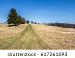 road through spring landscape   ... | Shutterstock . vector #617261093