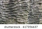 tree trunk texture | Shutterstock . vector #617356637