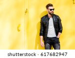 colorful portrait of a handsome ... | Shutterstock . vector #617682947