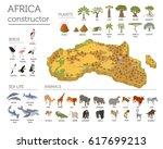 flat 3d isometric africa flora... | Shutterstock .eps vector #617699213