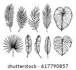 hand drawn vector illustration  ... | Shutterstock .eps vector #617790857